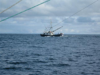 another tuna fishing boat speeds by.